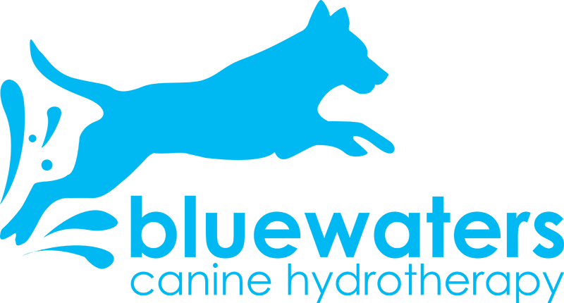Bluewaters Canine Hydrotherapy