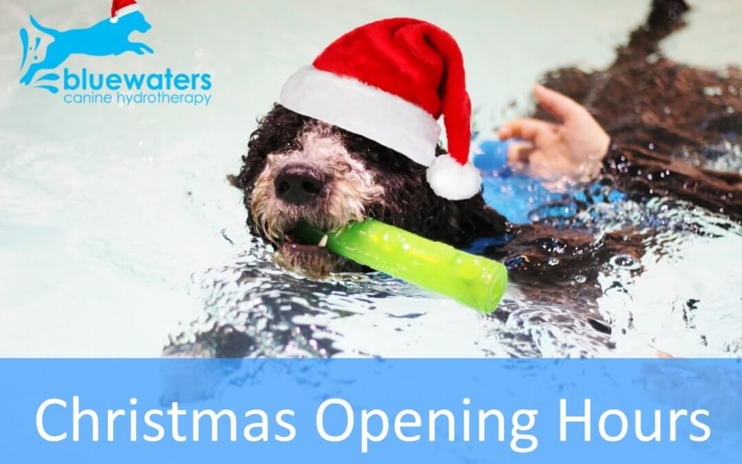 Christmas Opening Times – 2017